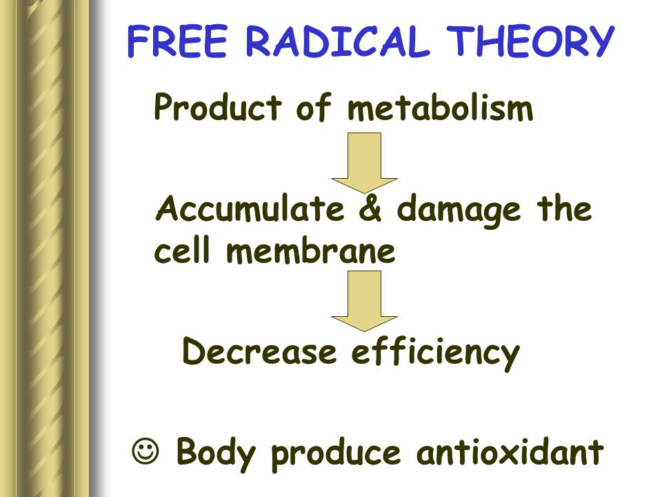 FREE RADICAL THEORY Product of metabolism