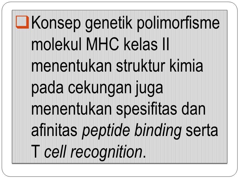 Konsep genetik polimorfisme molekul MHC kelas II menentukan struktur kimia pada cekungan juga menentukan spesifitas dan afinitas peptide binding serta T cell recognition.