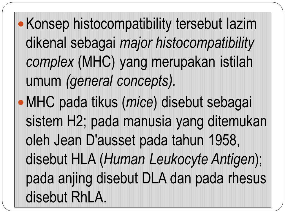 Konsep histocompatibility tersebut lazim dikenal sebagai major histocompatibility complex (MHC) yang merupakan istilah umum (general concepts).