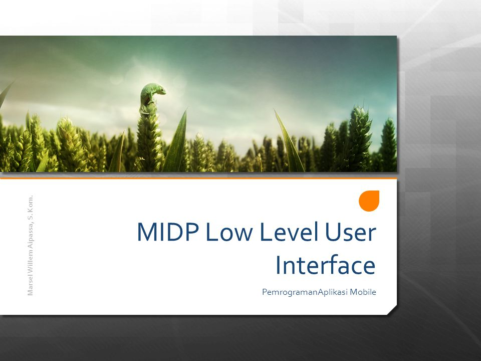 MIDP Low Level User Interface