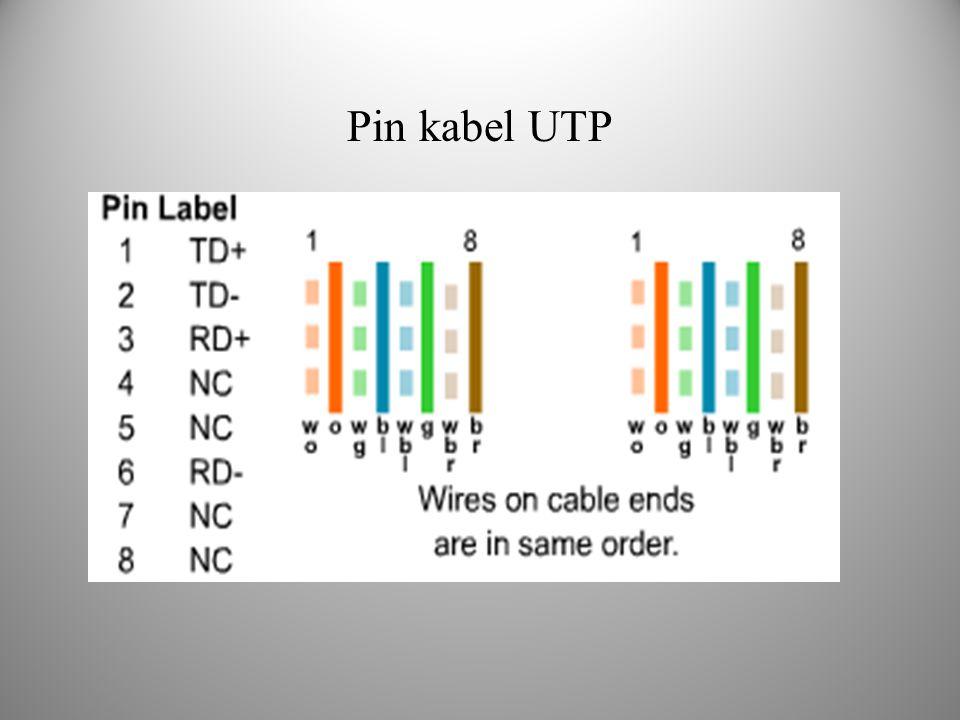 Pin kabel UTP