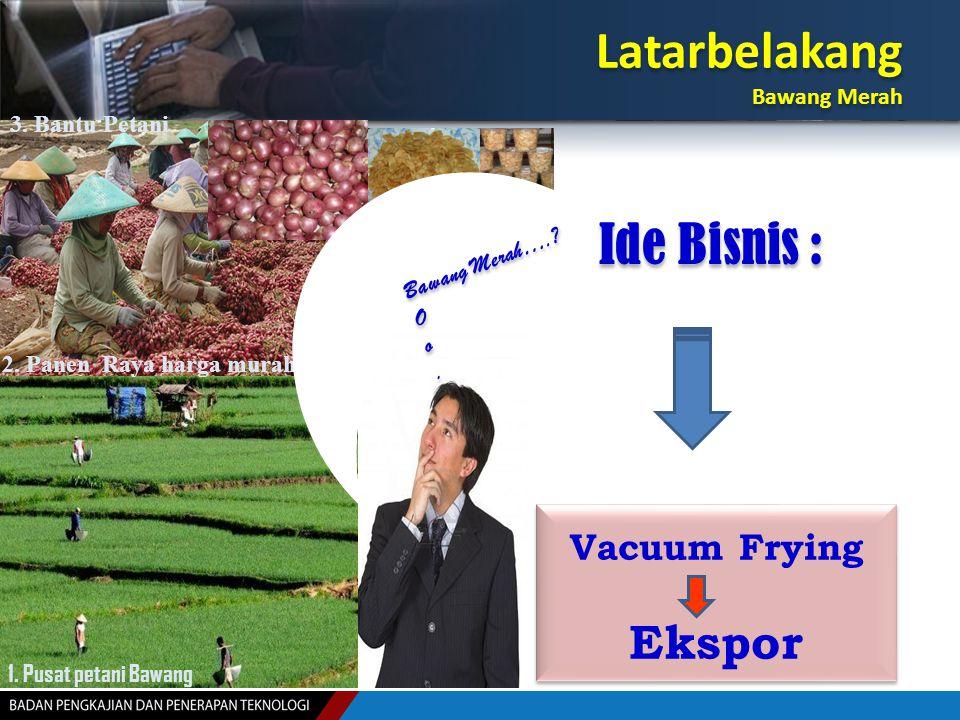 Latarbelakang Ide Bisnis : Ekspor Vacuum Frying Bawang Merah