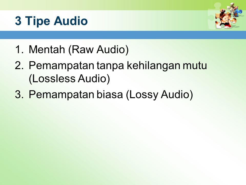 3 Tipe Audio Mentah (Raw Audio)