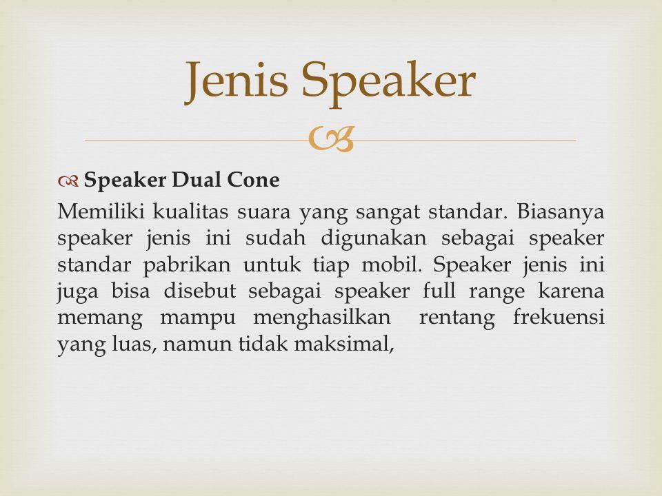 Jenis Speaker Speaker Dual Cone