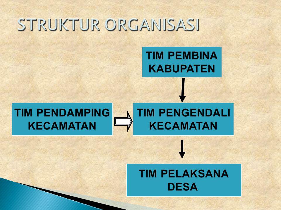 STRUKTUR ORGANISASI TIM PEMBINA KABUPATEN TIM PENDAMPING KECAMATAN