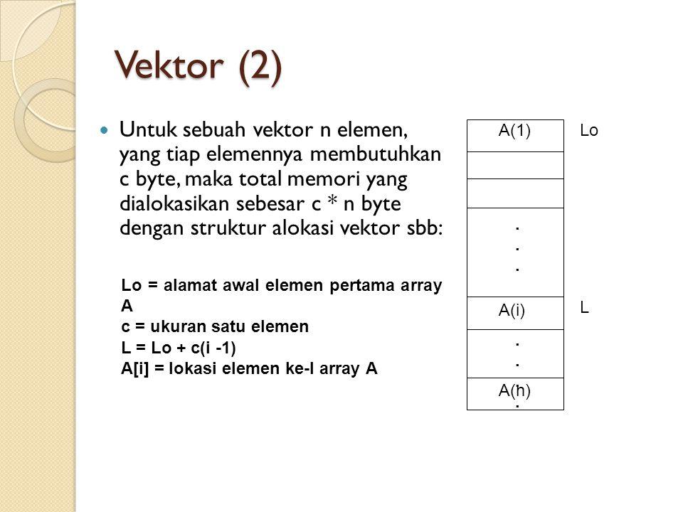 Vektor (2)