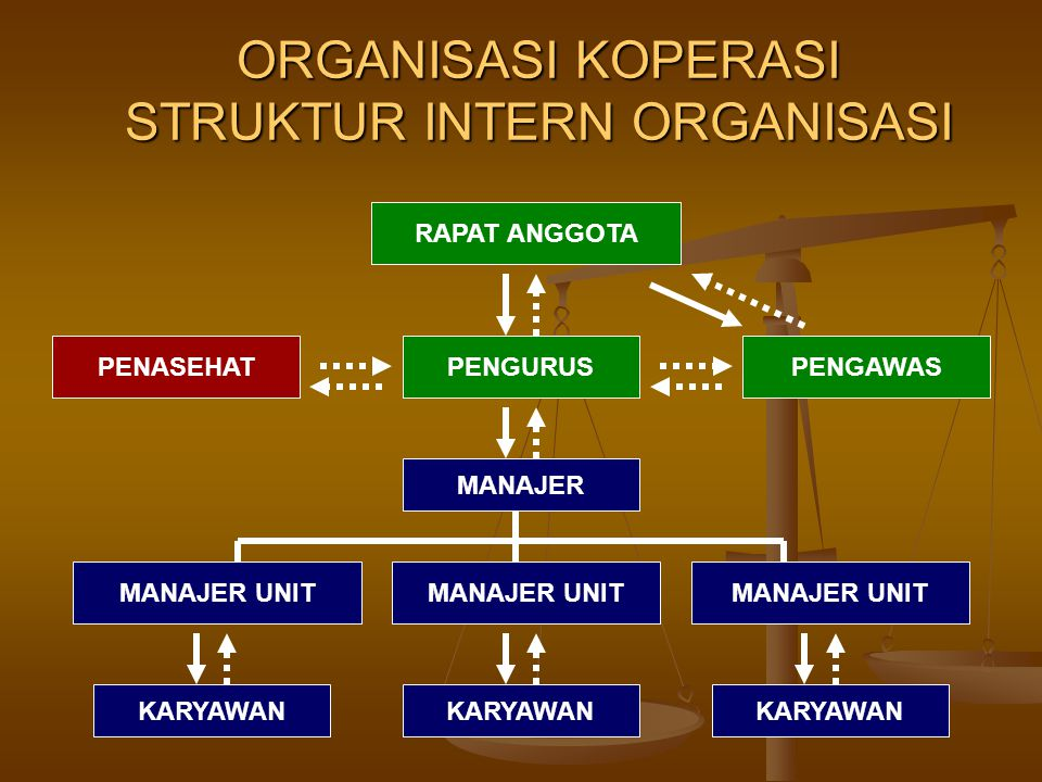 ORGANISASI KOPERASI STRUKTUR INTERN ORGANISASI