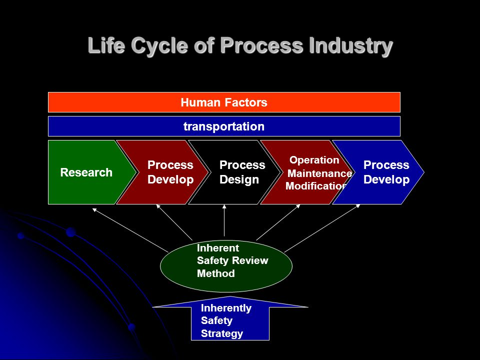 Life Cycle of Process Industry