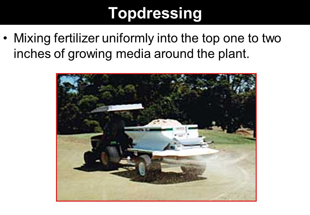 Topdressing Mixing fertilizer uniformly into the top one to two inches of growing media around the plant.