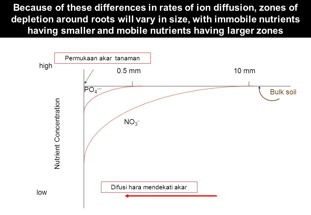 Because of these differences in rates of ion diffusion, zones of depletion around roots will vary in size, with immobile nutrients having smaller and mobile nutrients having larger zones