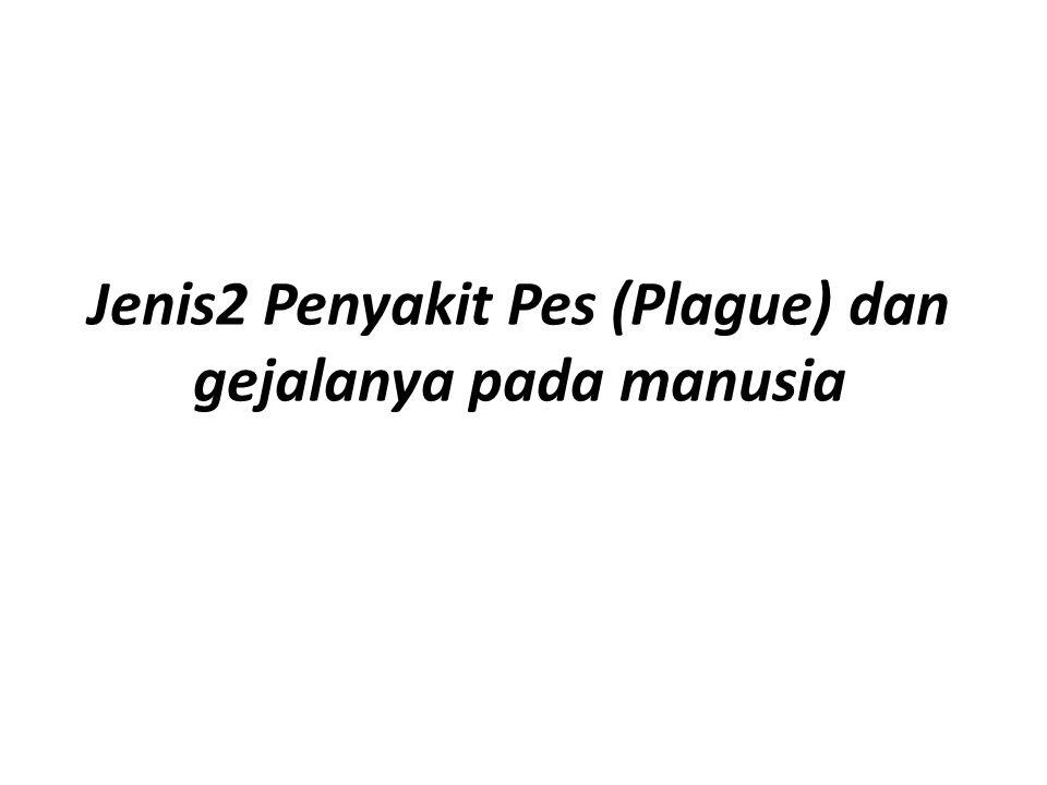 Jenis2 Penyakit Pes (Plague) dan gejalanya pada manusia