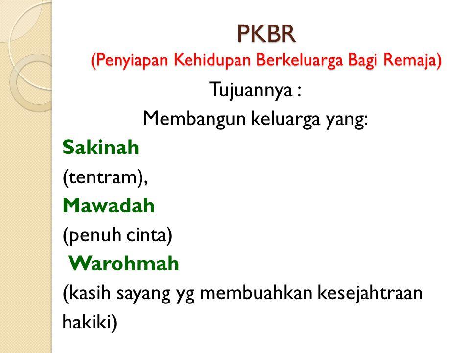 PKBR (Penyiapan Kehidupan Berkeluarga Bagi Remaja)