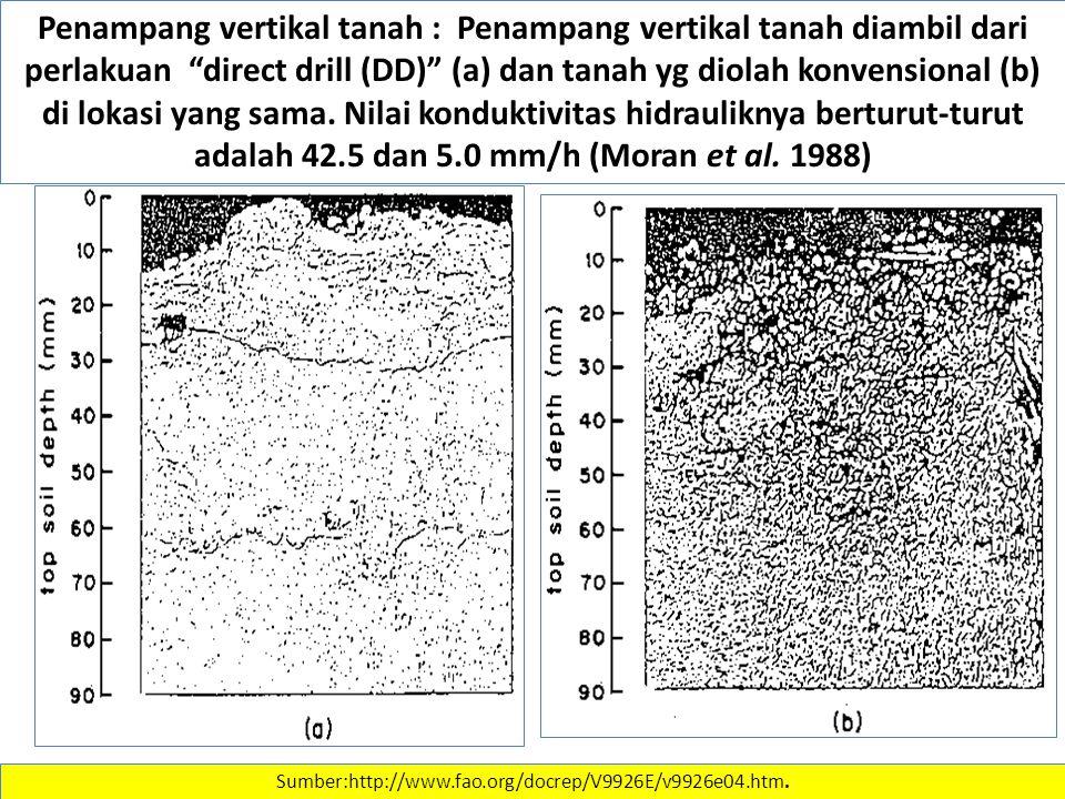 Penampang vertikal tanah : Penampang vertikal tanah diambil dari perlakuan direct drill (DD) (a) dan tanah yg diolah konvensional (b) di lokasi yang sama. Nilai konduktivitas hidrauliknya berturut-turut adalah 42.5 dan 5.0 mm/h (Moran et al. 1988)