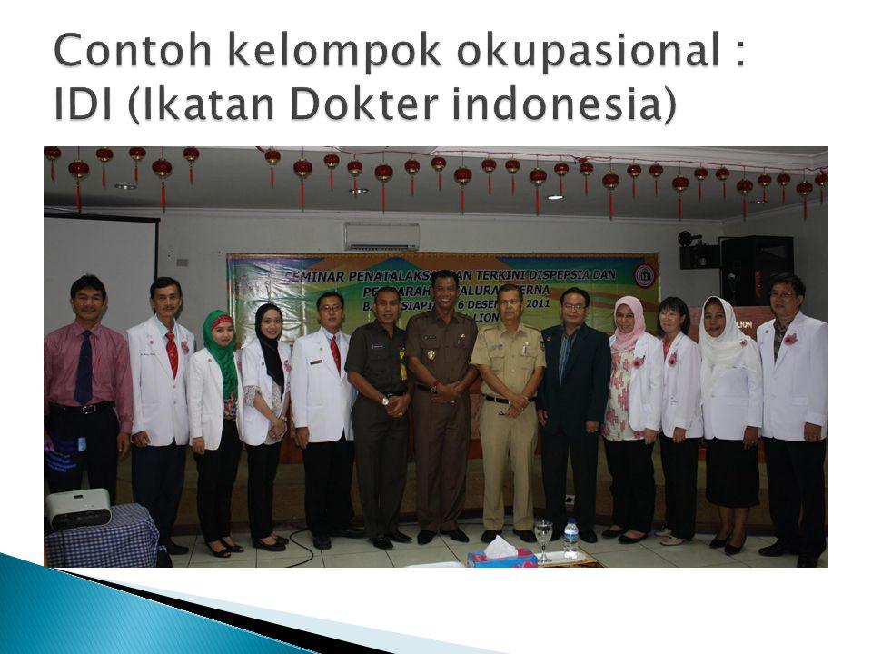 Contoh kelompok okupasional : IDI (Ikatan Dokter indonesia)