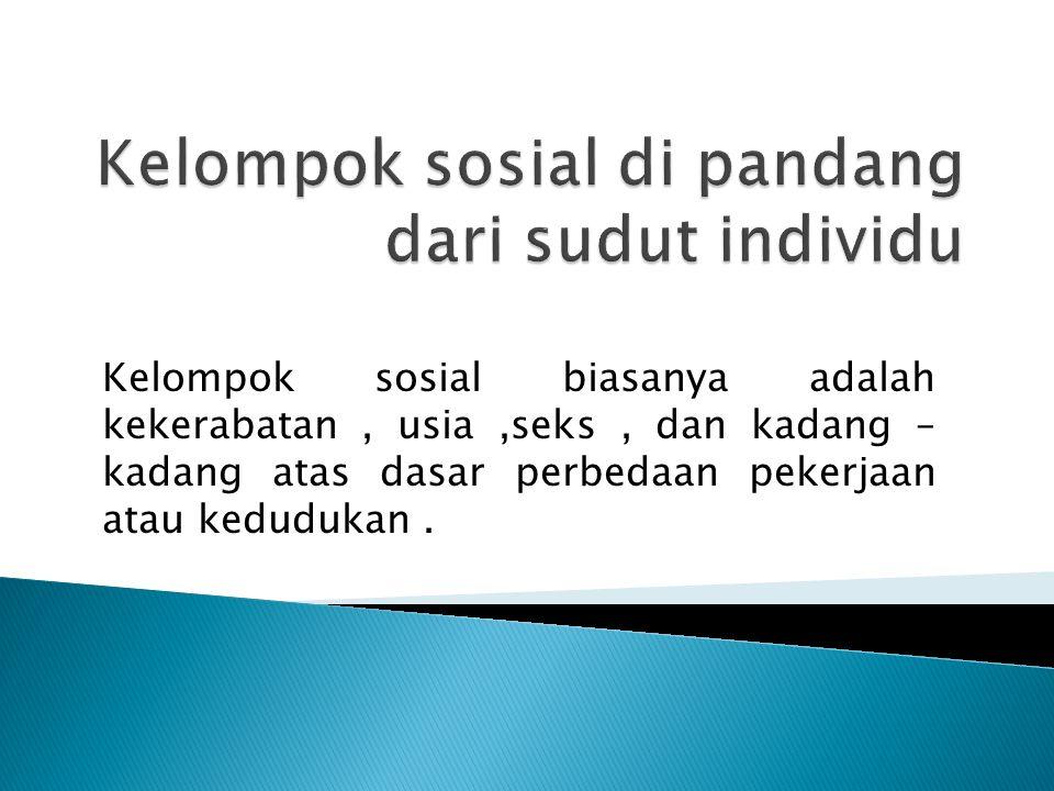 Kelompok sosial di pandang dari sudut individu