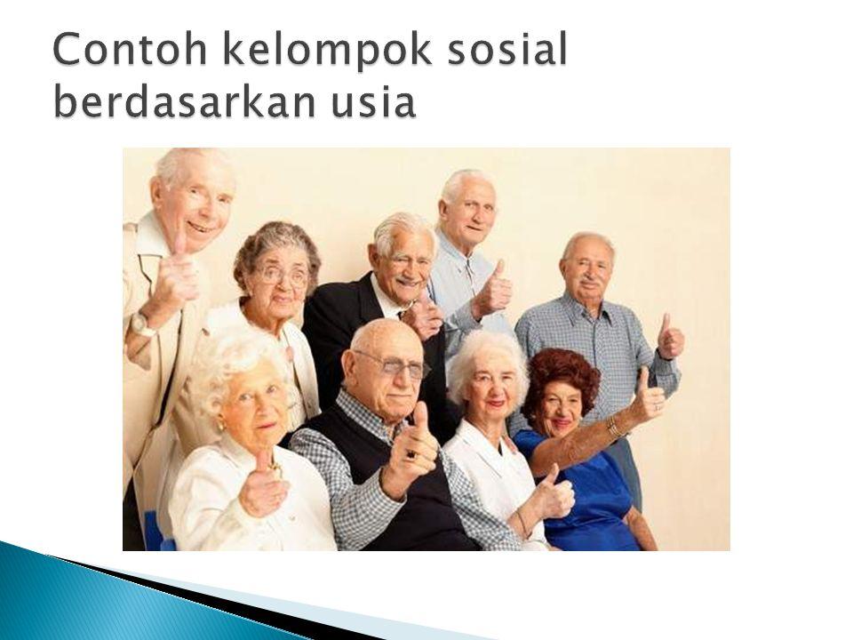 Contoh kelompok sosial berdasarkan usia