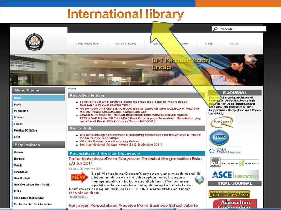 International library