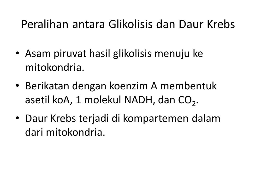 Peralihan antara Glikolisis dan Daur Krebs