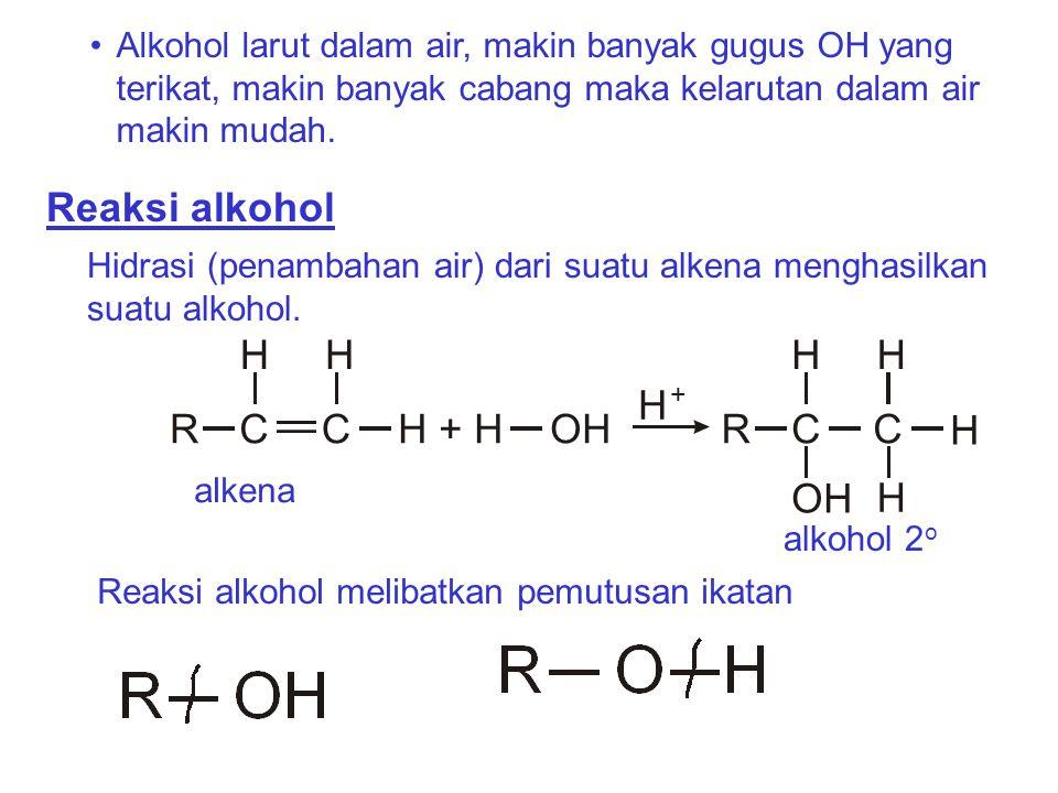 Reaksi alkohol H C H + H OH R OH