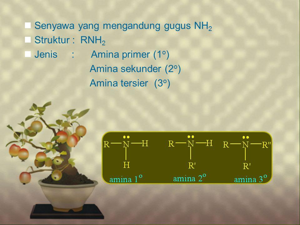 Senyawa yang mengandung gugus NH2