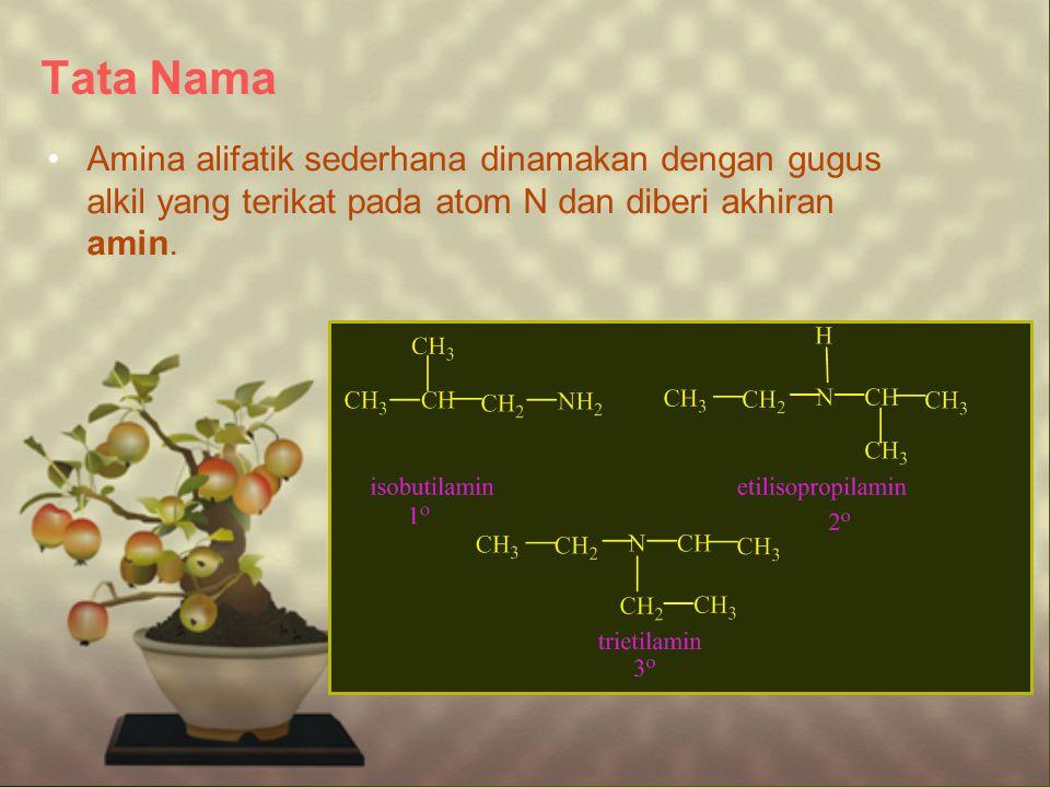 Tata Nama Amina alifatik sederhana dinamakan dengan gugus alkil yang terikat pada atom N dan diberi akhiran amin.
