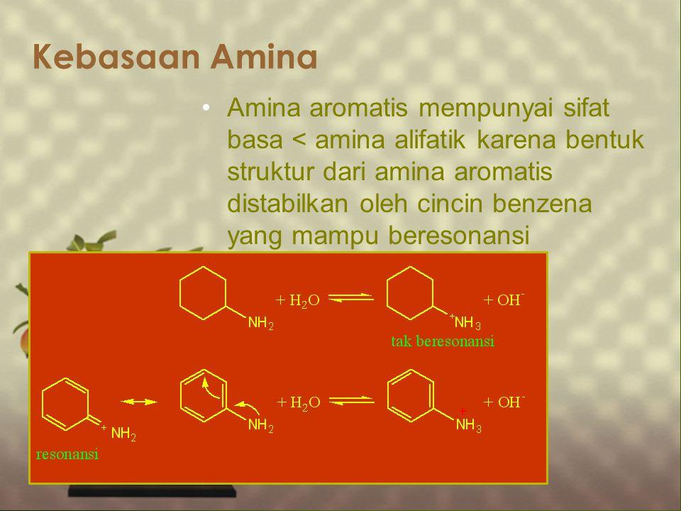 Kebasaan Amina