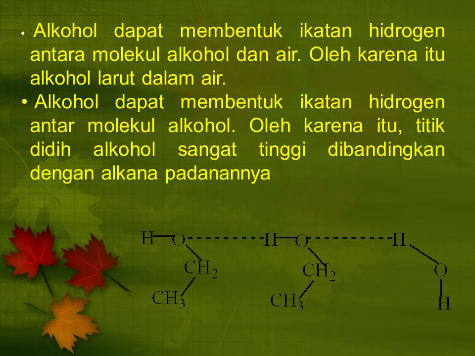 Alkohol dapat membentuk ikatan hidrogen antara molekul alkohol dan air