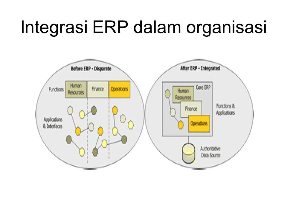 Integrasi ERP dalam organisasi