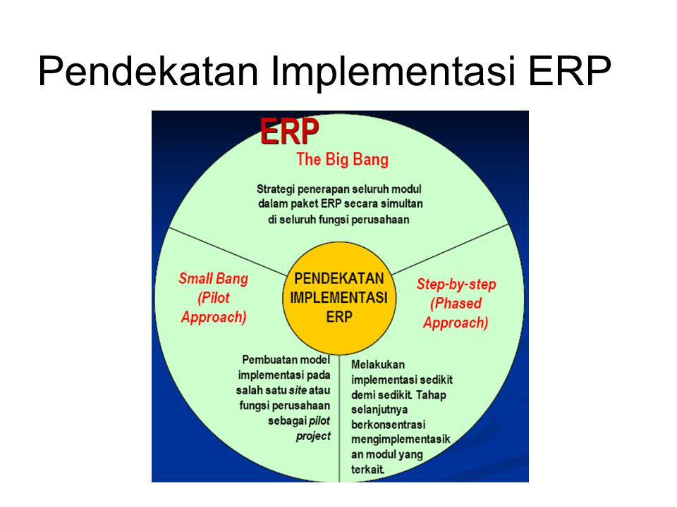 Pendekatan Implementasi ERP