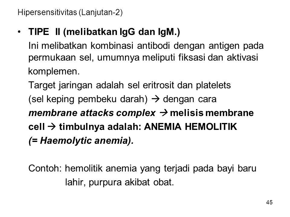 Hipersensitivitas (Lanjutan-2)
