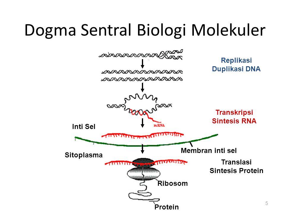 Dogma Sentral Biologi Molekuler