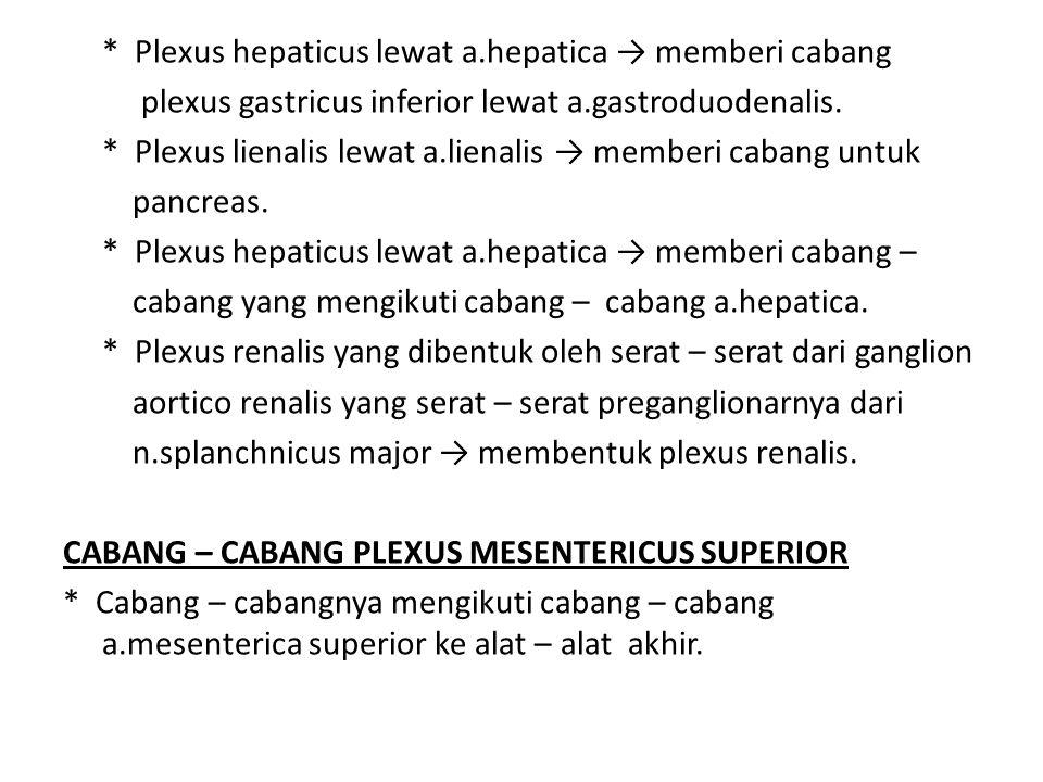 Plexus hepaticus lewat a
