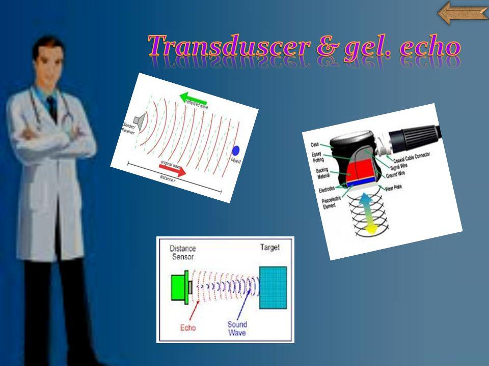 Transduscer & gel. echo