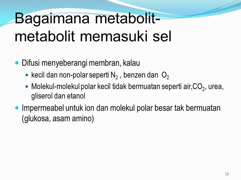 Bagaimana metabolit-metabolit memasuki sel
