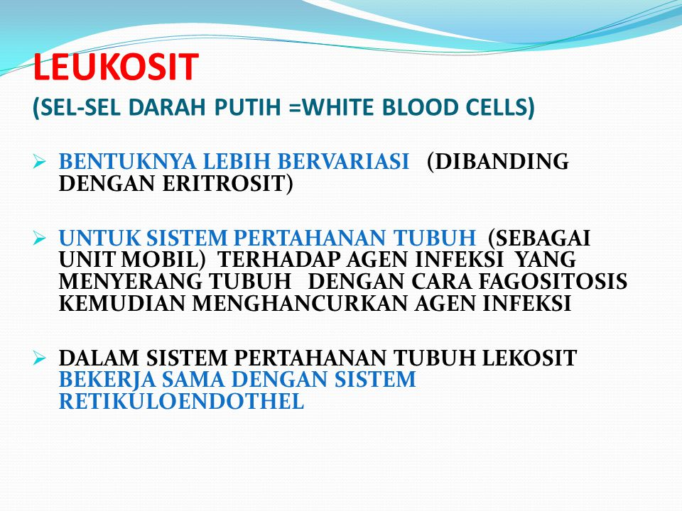 LEUKOSIT (SEL-SEL DARAH PUTIH =WHITE BLOOD CELLS)