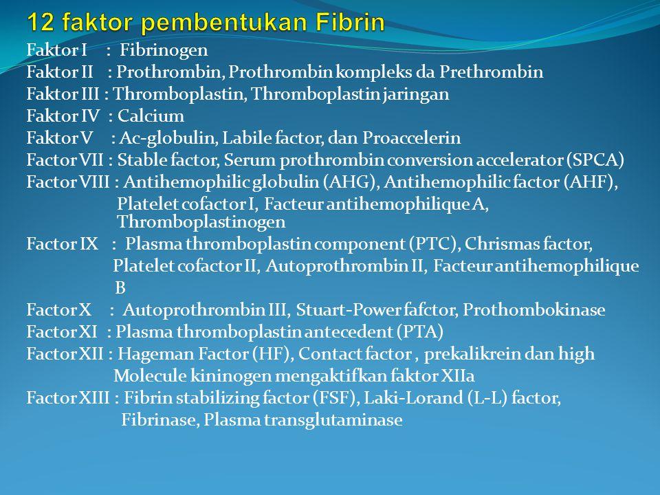 12 faktor pembentukan Fibrin