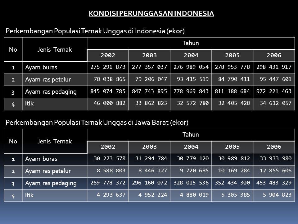 KONDISI PERUNGGASAN INDONESIA