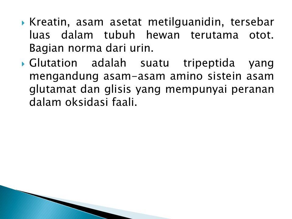 Kreatin, asam asetat metilguanidin, tersebar luas dalam tubuh hewan terutama otot. Bagian norma dari urin.