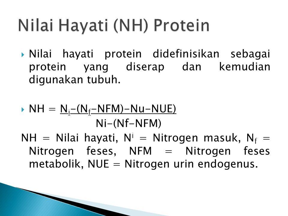 Nilai Hayati (NH) Protein