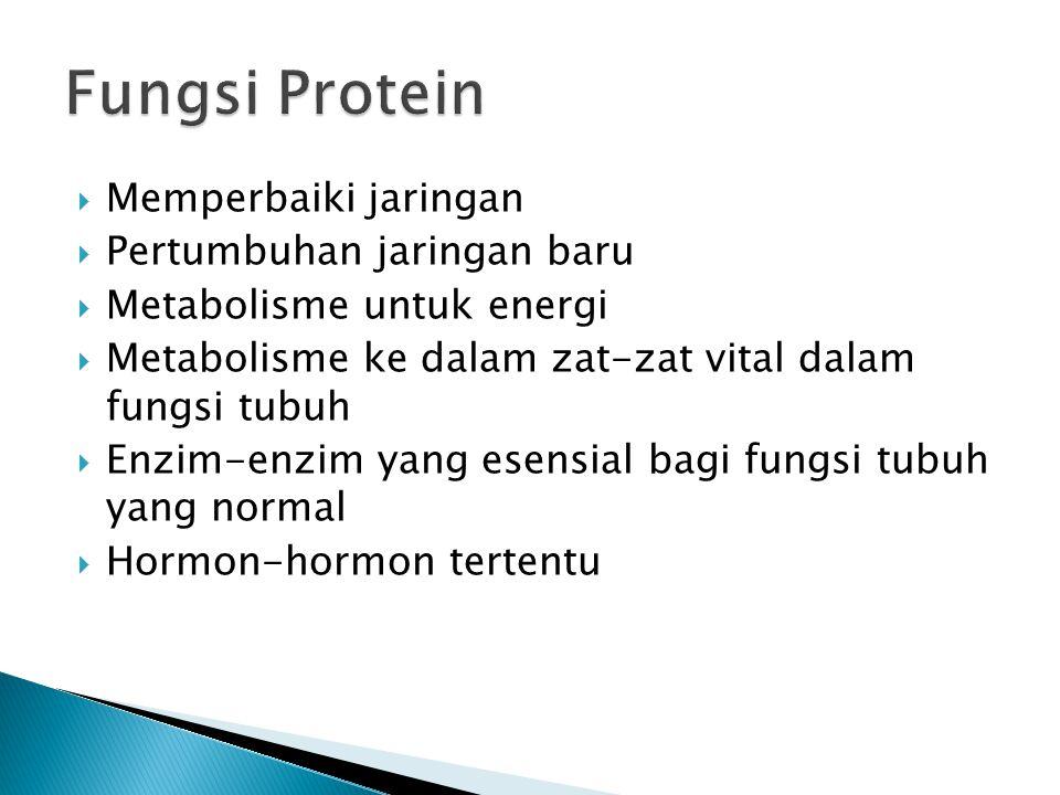 Fungsi Protein Memperbaiki jaringan Pertumbuhan jaringan baru