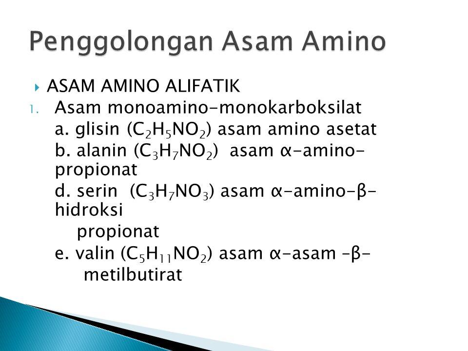 Penggolongan Asam Amino