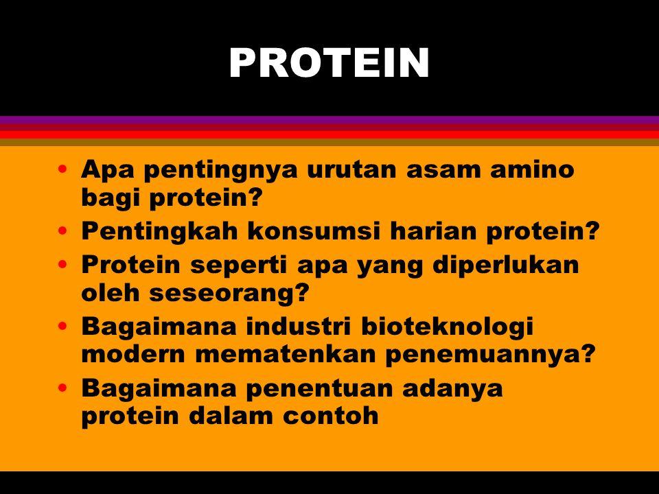 PROTEIN Apa pentingnya urutan asam amino bagi protein