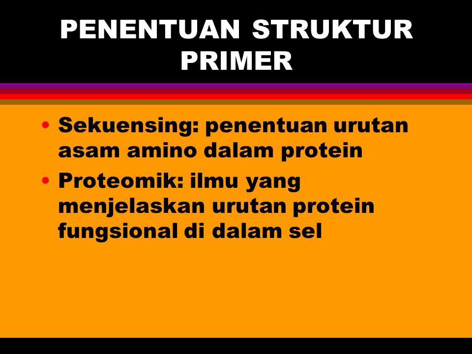 PENENTUAN STRUKTUR PRIMER