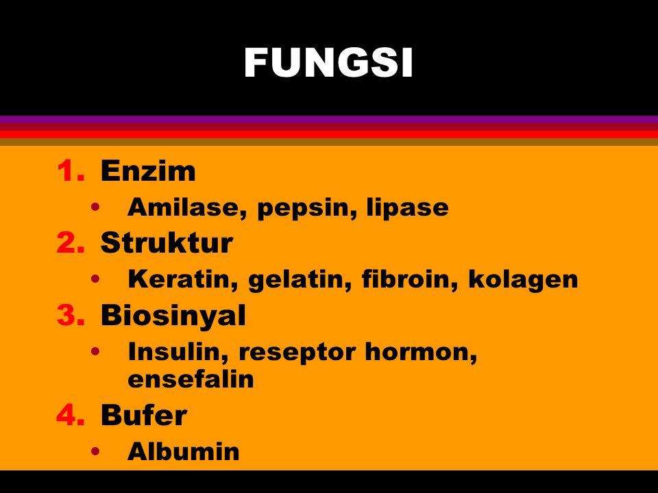 FUNGSI Enzim Struktur Biosinyal Bufer Amilase, pepsin, lipase