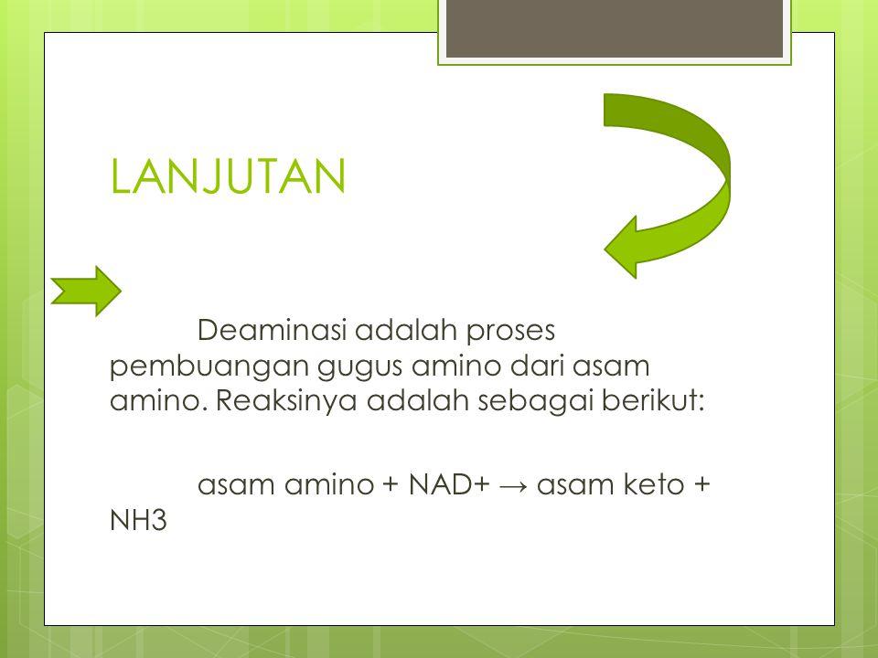 LANJUTAN Deaminasi adalah proses pembuangan gugus amino dari asam amino. Reaksinya adalah sebagai berikut: