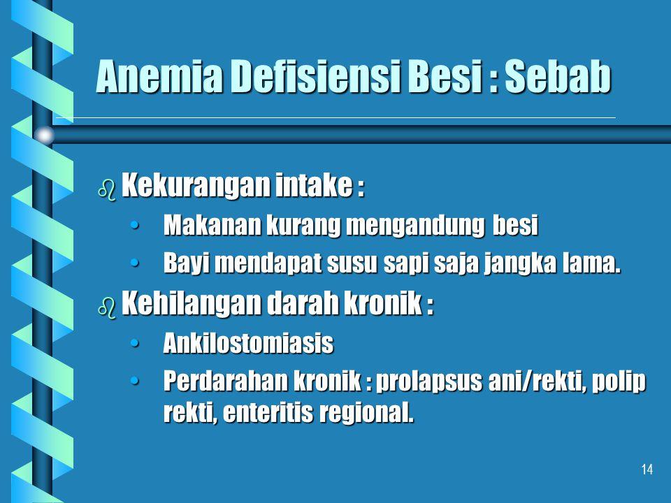 Anemia Defisiensi Besi : Sebab