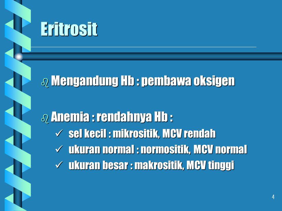 Eritrosit Mengandung Hb : pembawa oksigen Anemia : rendahnya Hb :