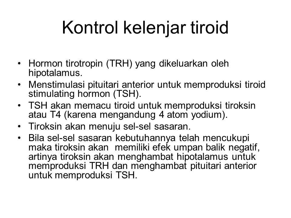 Kontrol kelenjar tiroid