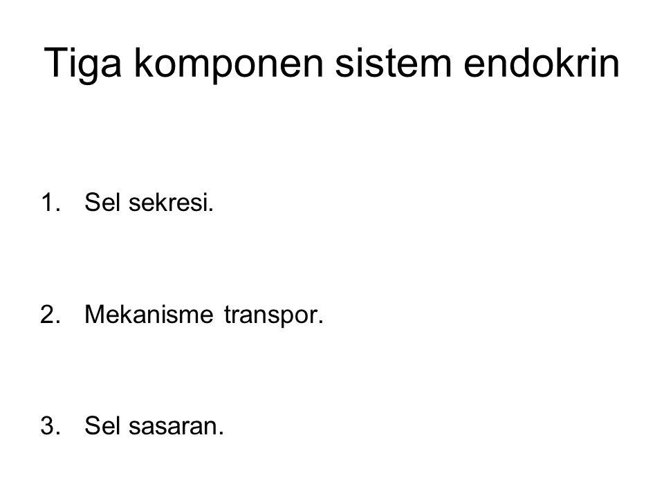 Tiga komponen sistem endokrin
