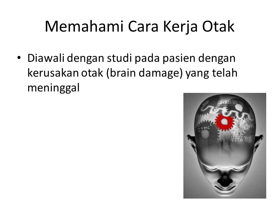 Memahami Cara Kerja Otak